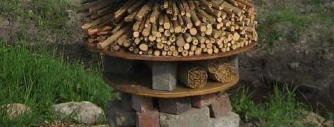 Как привлечь в сад полезных насекомых?!