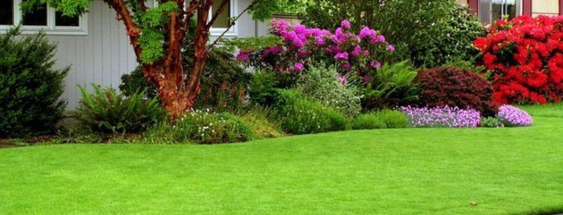 Как уложить рулонный газон?!