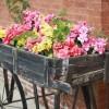Идея для красивого сада!